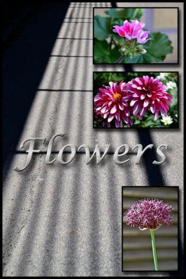 Blomsterkollage_redigerad-1